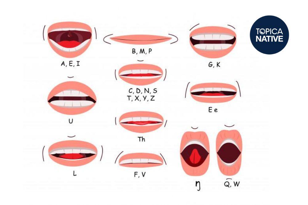 Một cơ miệng linh hoạt giúp bạn phát âm tiếng Anh dễ dàng hơn