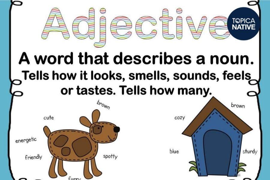 Định nghĩa tính từ trong tiếng Anh