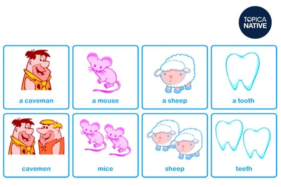 Một số danh từ số nhiều bất quy tắc trong tiếng Anh