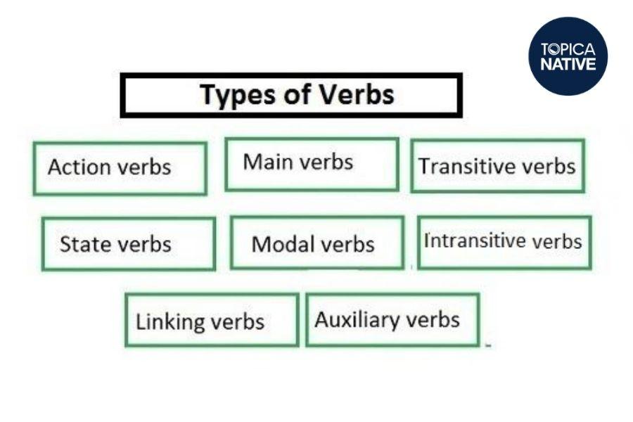 Phân loại động từ trong tiếng Anh