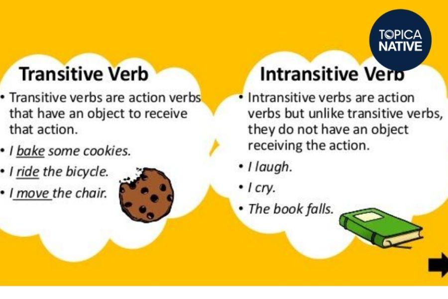 Cách phân biệt ngoại động từ và nội động từ