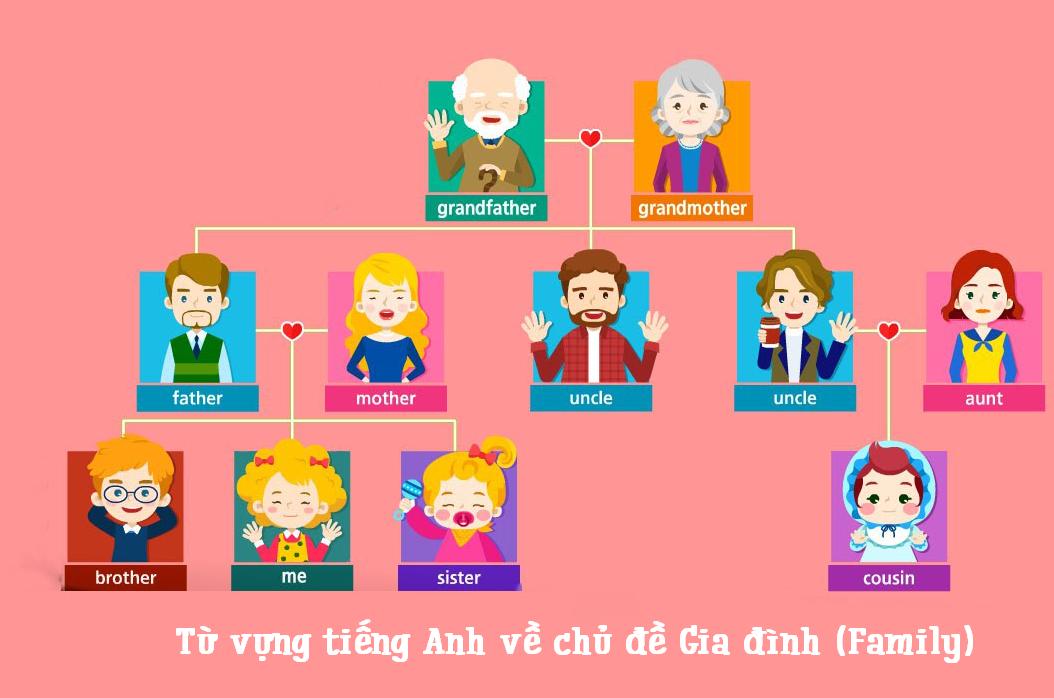 Từ vựng gia đình tiếng Anh - Người trong gia đình tiếng Anh