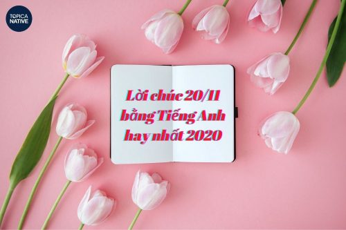 Lời chúc 20/11 bằng Tiếng Anh hay nhất 2020