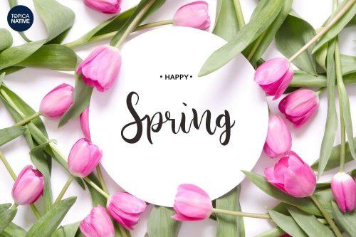 Học Tiếng Anh về mùa xuân